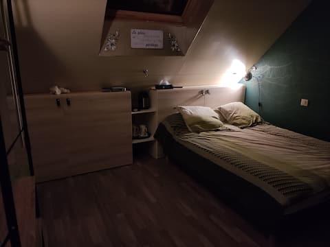 Sdb et grde chambre lumineuse de  14m2 privatives