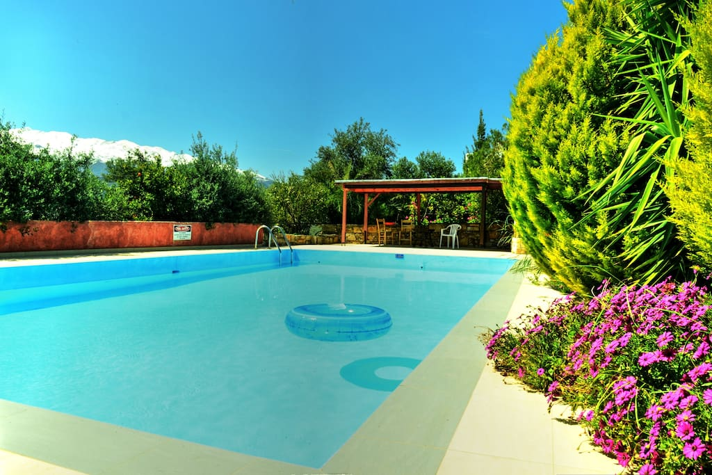 Anemole's Pool