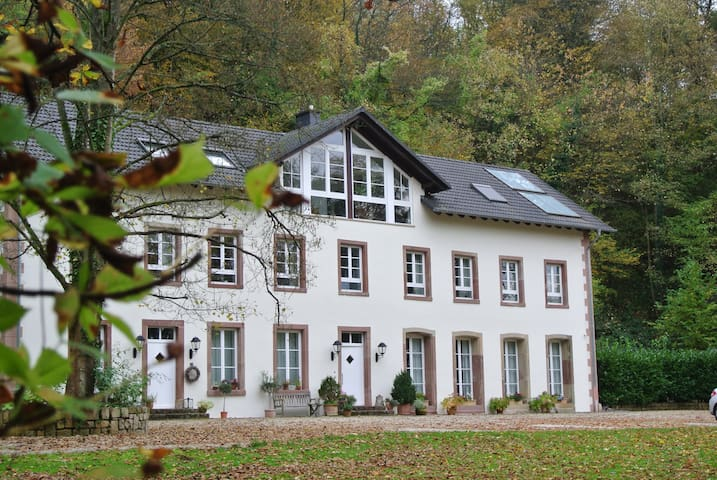 Villa Tocksberg - Merzig - Bed & Breakfast