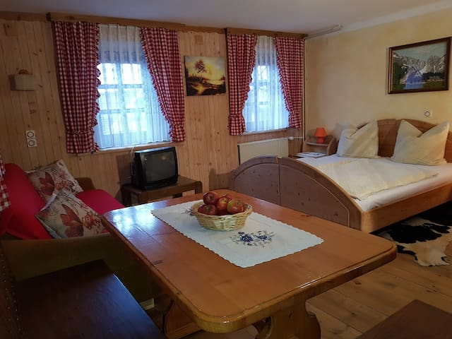 Slovenian apartment for 7 person