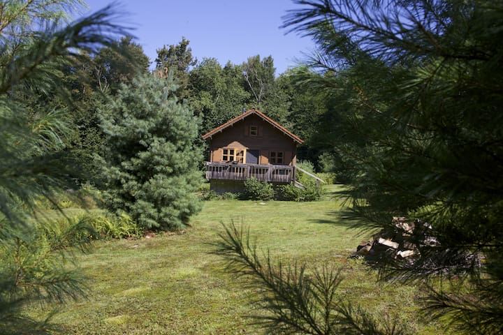 SECLUDED CABIN CATSKILL PARK  on 20 acres