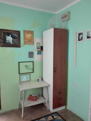 Lovely bright room in a private house with garden - Beograd - Huis