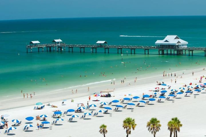 Gulfside Beach Getaway - Clearwater - Kondominium