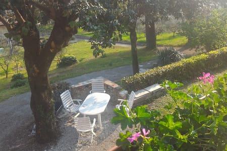 Casa indipendente a Valdobbiadene - Valdobbiadene - Lejlighed