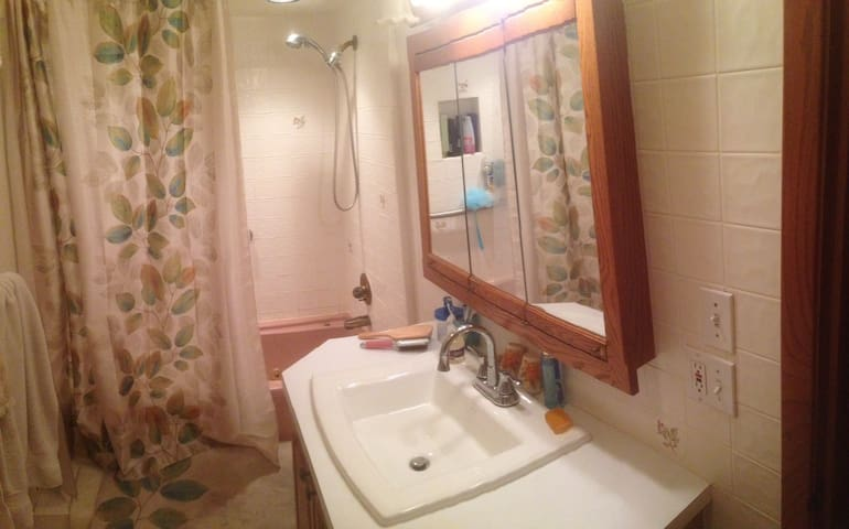 Main bathroom and shower.  Additional 1/2 bath, plus a basement shower