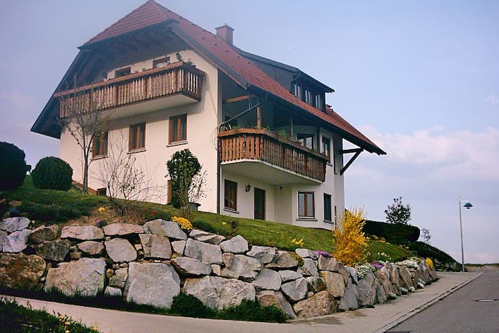Ground floor apartment in the Black Forest with terrace and a unique view