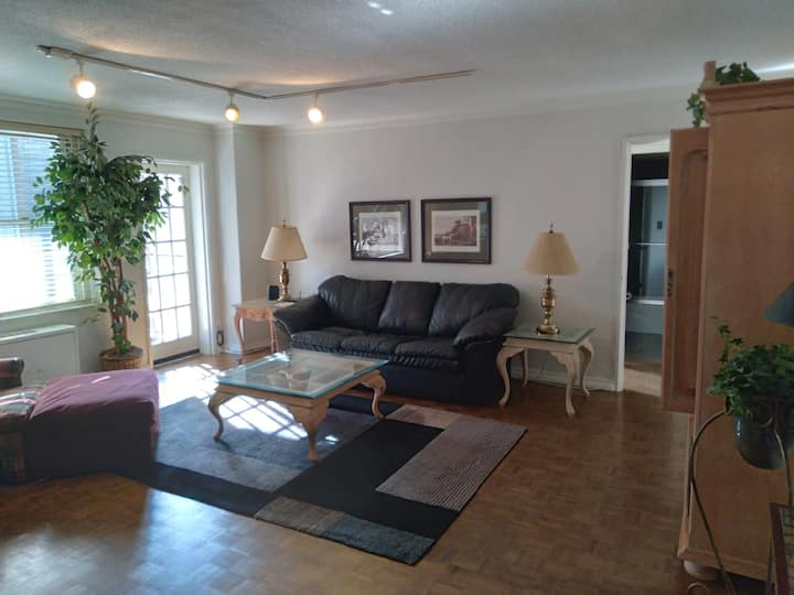 1 BR condo in the heart of Downtown ATL