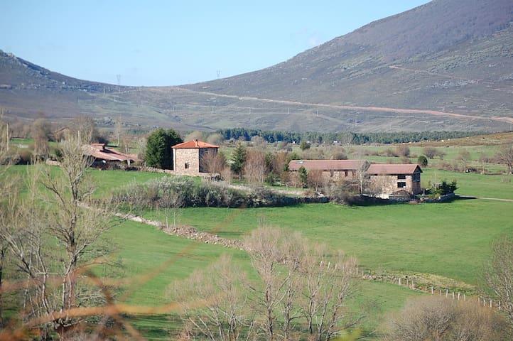 """Jardín Mandala - Hotel """"Tilos"""" - Hab. Turquesa"""
