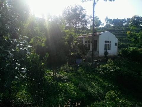 KMR Cottage
