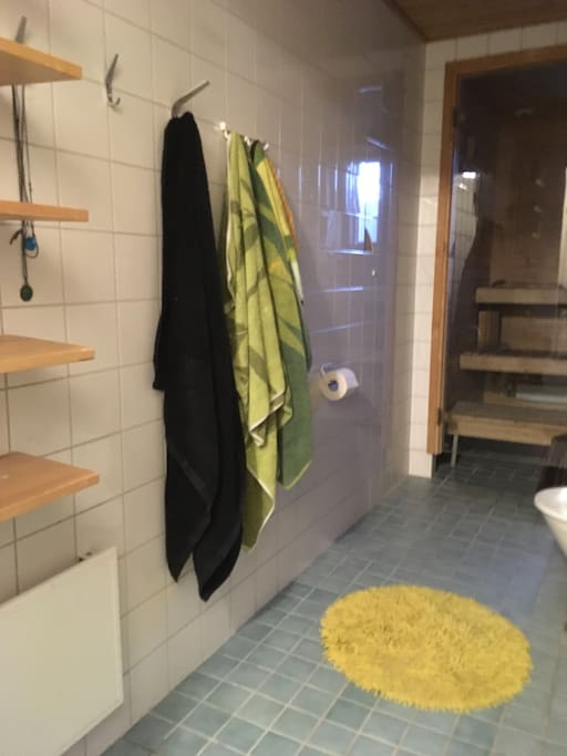 Bigger bathroom: sauna, shower, washing machine, blowdryer.