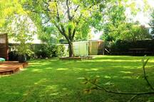 Generous Outdoor Space, Fully Fenced section