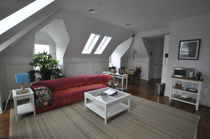 3rd flr apt, 1885 Victorian Home, Coolidge Corner - Brookline - Appartement