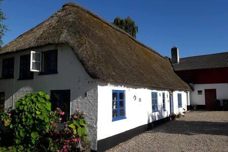 a typical old  Danish farm house, 日本語でOK