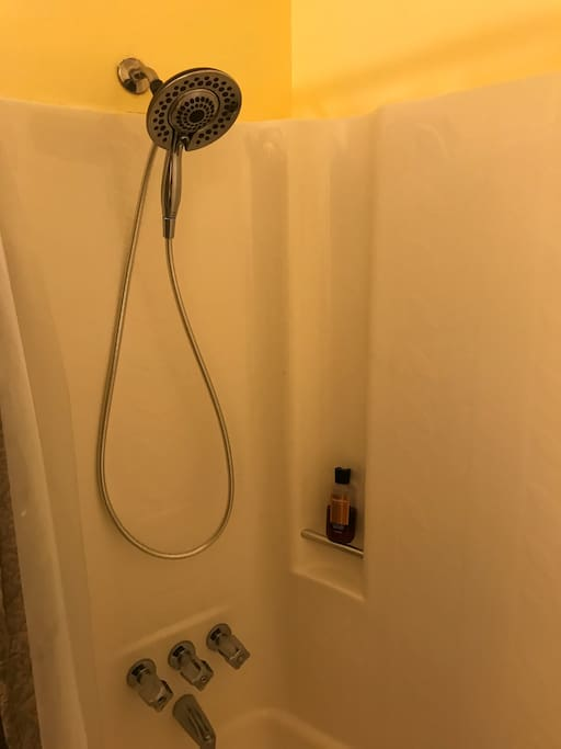 Private bathroom with Tub shower combo & dual shower massage