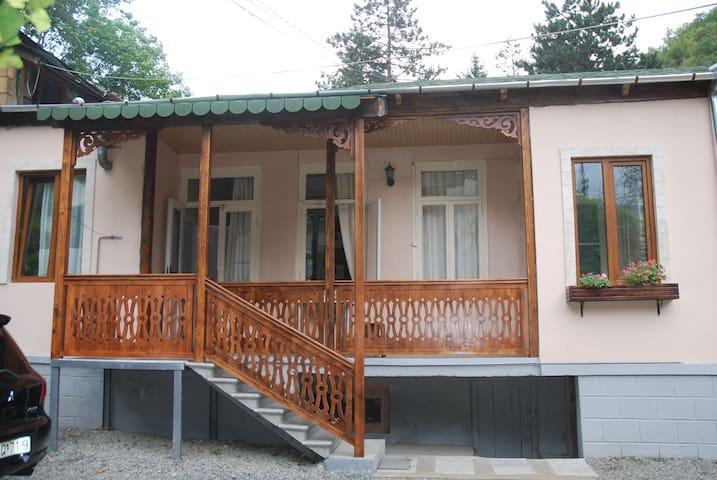 Borjomi Central Park guest house - Borjomi - Talo