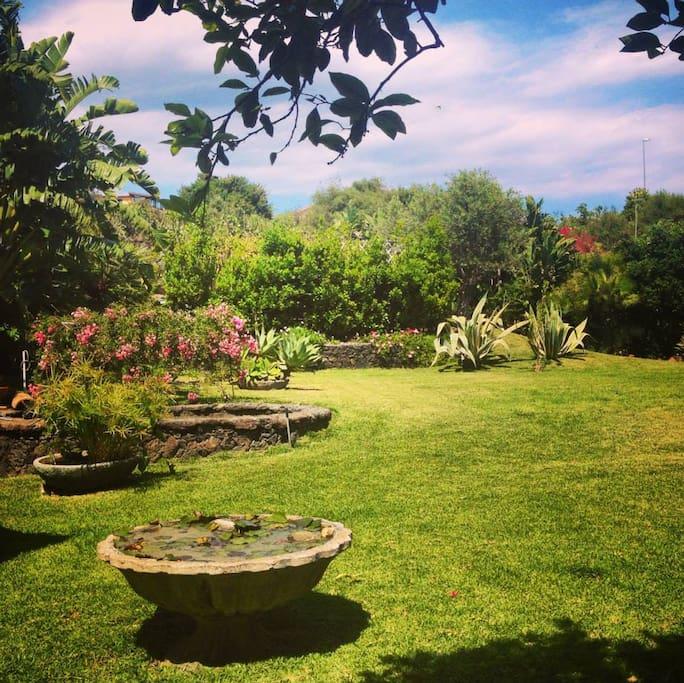 Lo splendido giardino