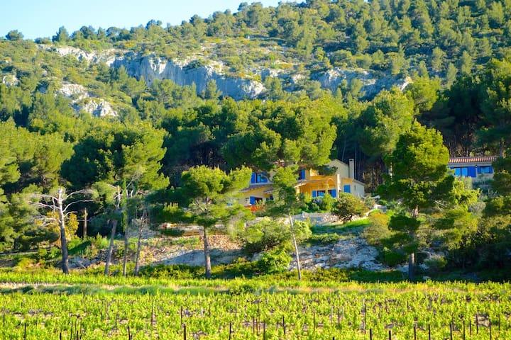 Mas Garrigue Vue imprenable Ventoux - Saint-Hippolyte-le-Graveyron - 一軒家