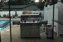 This is a propane gas grill, which sits under a canopy, for those hot sunny or rainy days.