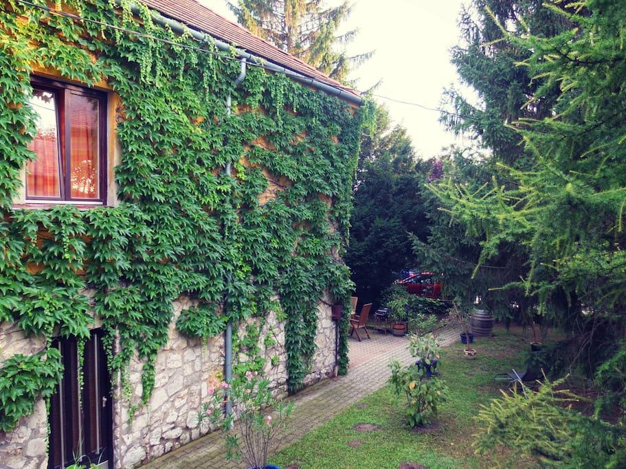kert / garden