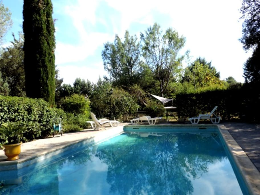 Spacious  swimming pool with picnic tables, lounge chairs  and barbeque