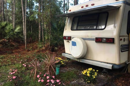 RV in the woods, country side, camping.
