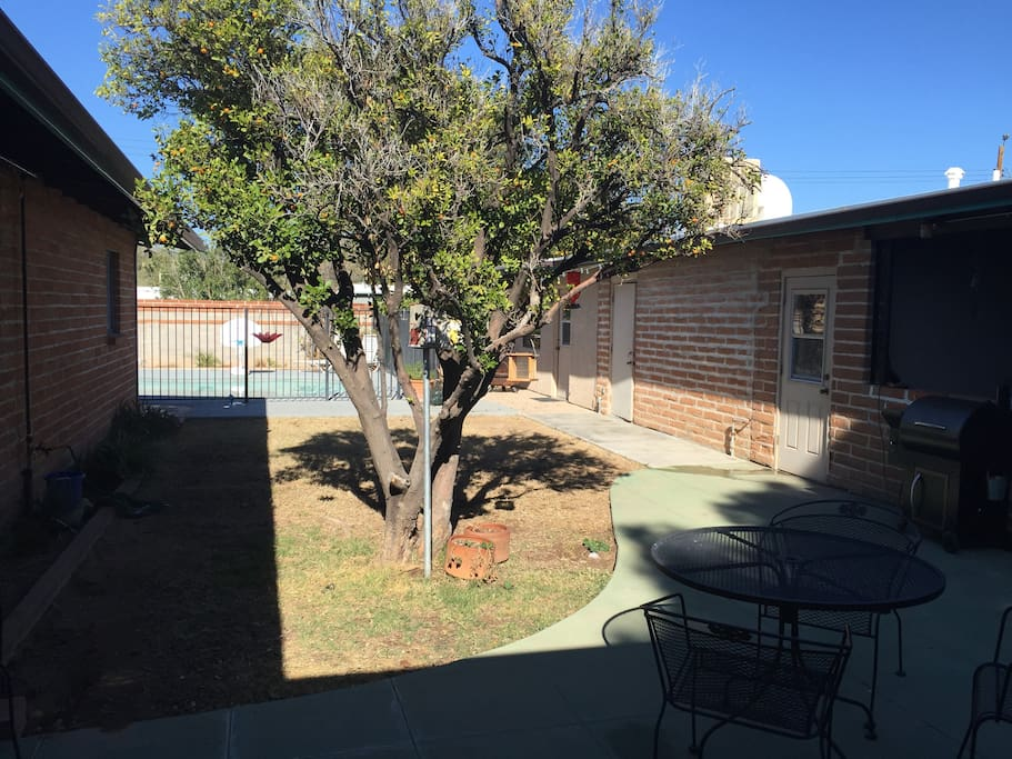 Backyard with a beautiful kumquat tree in the foreground. The building on the right is private storage.
