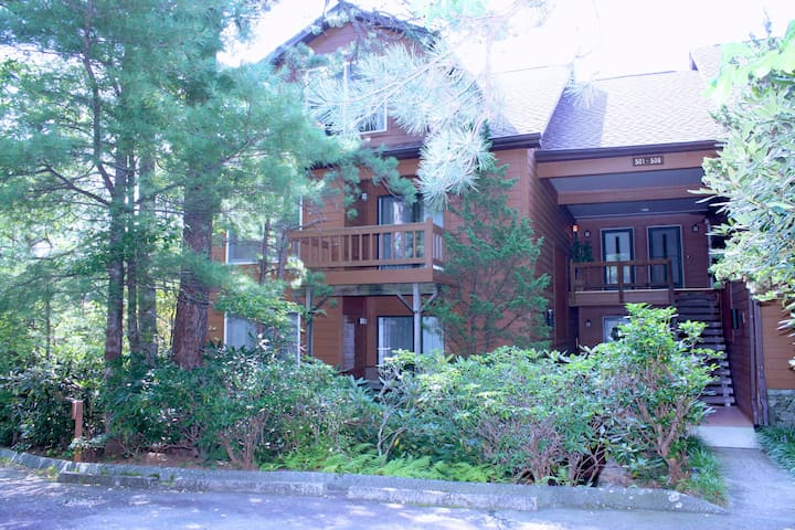 North Carolina Mountain Condo - Lake Toxaway - Apartment