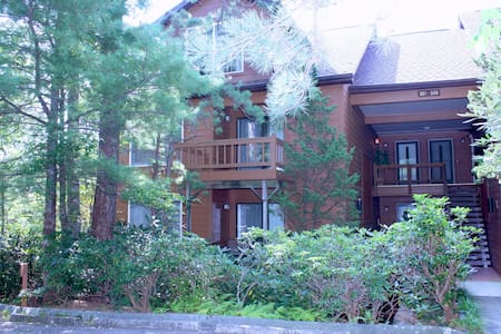 North Carolina Mountain Condo - Lake Toxaway