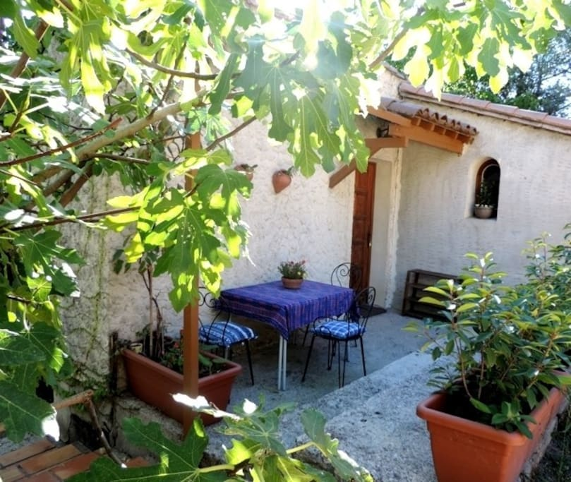 Entrance to the house with a little terrace by the fig tree.  Fresh figs for breakfast by mid August to early September