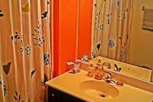 Bathroom w/ 6-speed massage shower head.