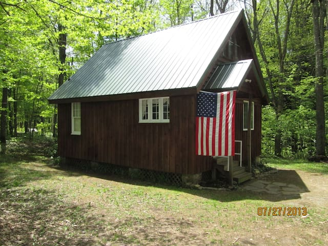 Rustic Tug Hill Cabin Near Pulaski  - Redfield - Cabana