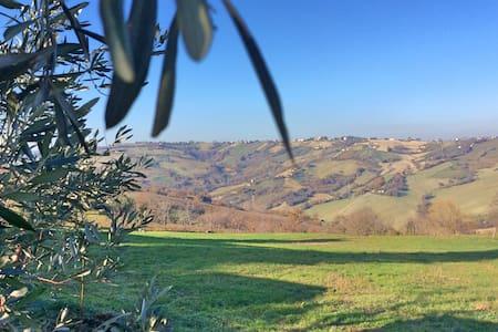 Villa Giuditta: quiet countryside - Villa