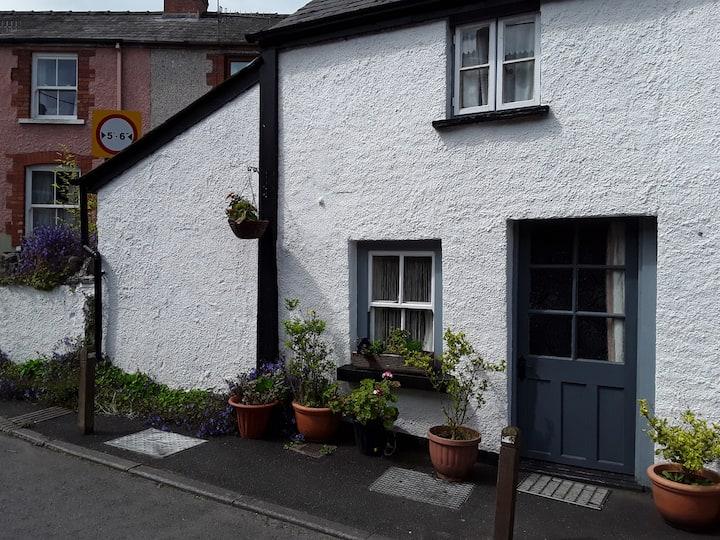 Black Lion Cottage  annex. Quaint  & characterful