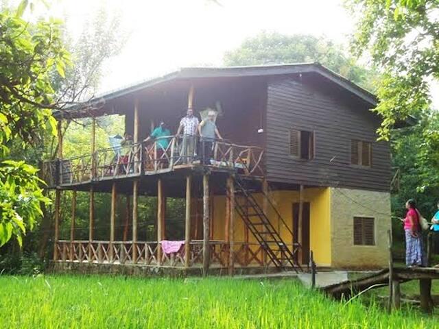 Kasun Safari Village Wasgamuwa Wood House Villa
