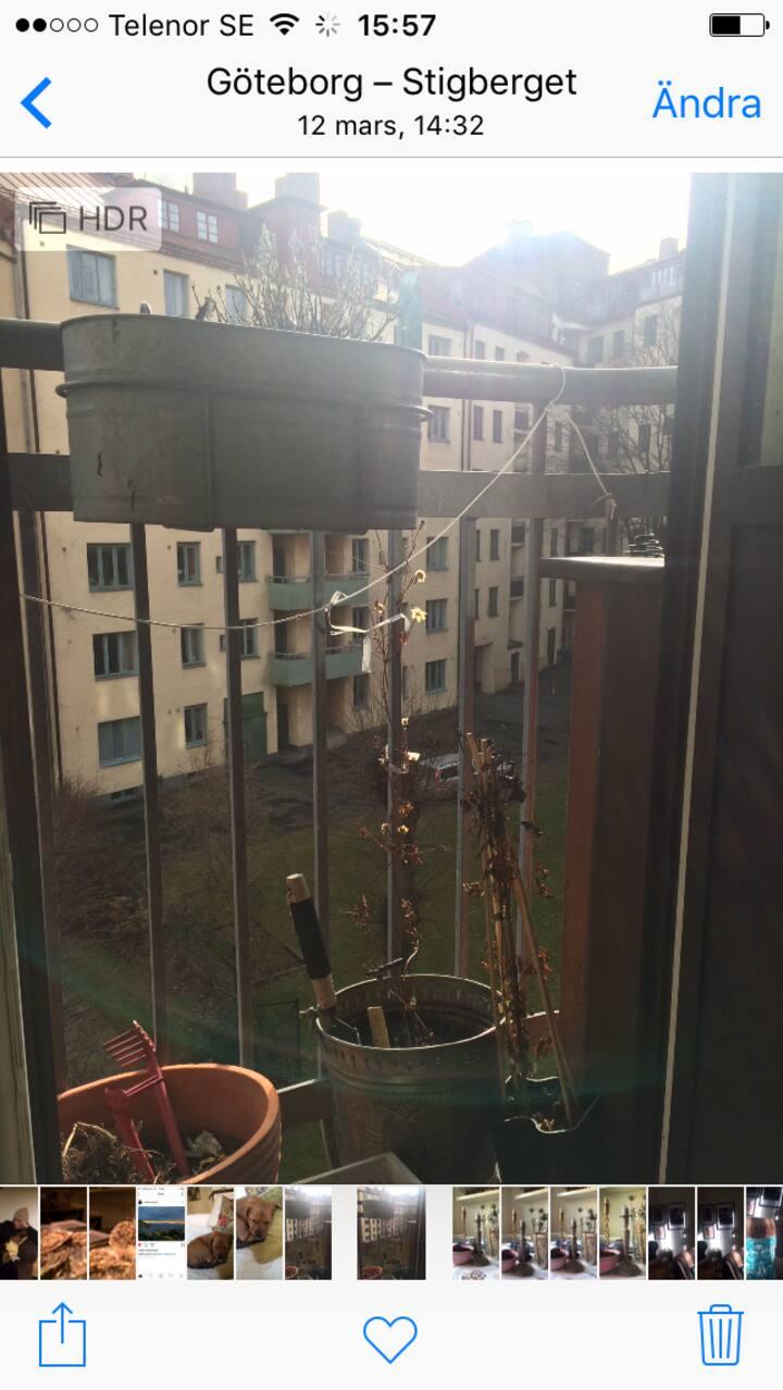 Lägenhet i Linne
