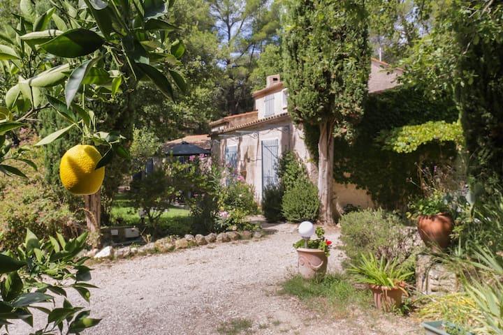 Chambre d'hôtes dans le Luberon - Cadenet - Bed & Breakfast