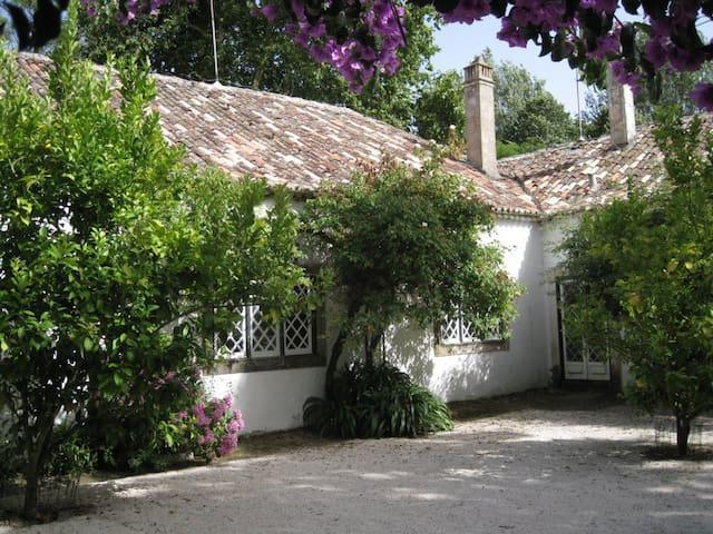 Quinta de São José B&B near Lisbon - Freiria