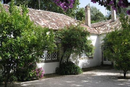Quinta de São José B&B near Lisbon - Freiria - Bed & Breakfast