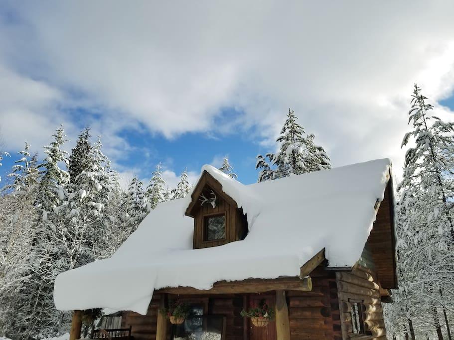 Winter at Violet Cabin