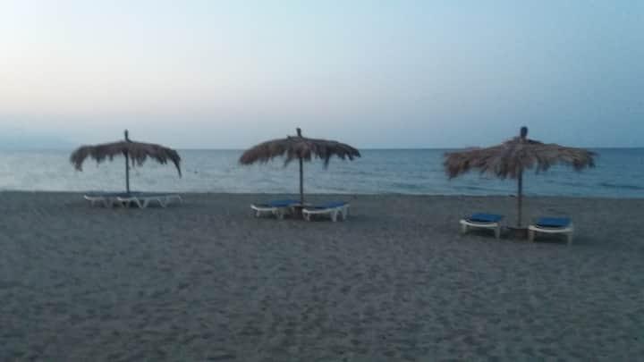 mini villa plus jardinet bord de plage