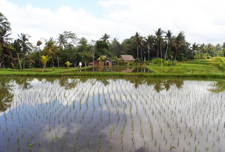 Tanah Hyang Farmstay Bali