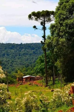 Alquiler económico en Misiones  hacia Cataratas