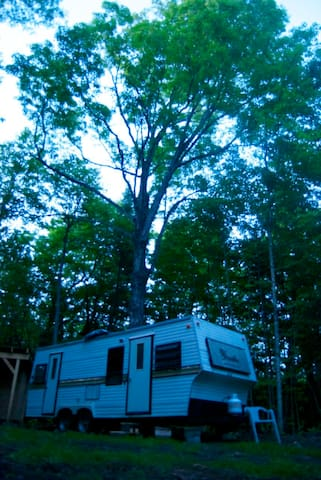 trailer in the woods. - Harcourt - Camper