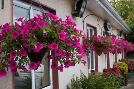 Delaneys Roadhouse Accommodation Apartments - portlaoise - Wikt i opierunek