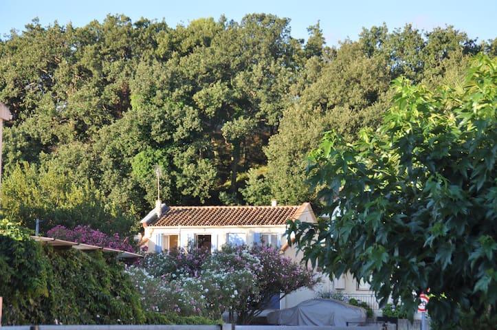 Ferienhaus direkt am Meer - Argelès-sur-Mer - Huis