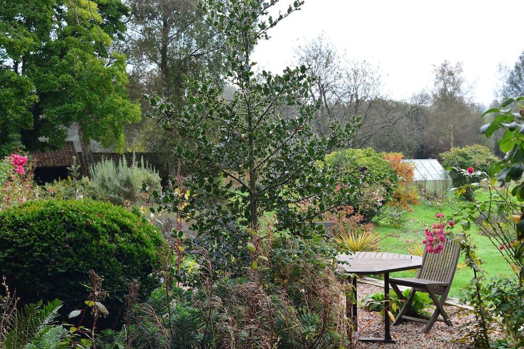 Un Jardin Sauvage doucement organisé ...