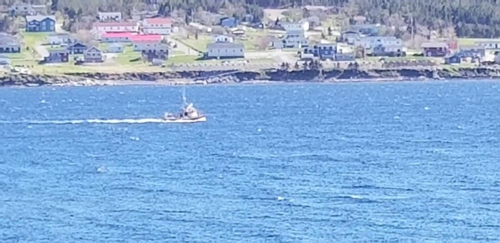 Watch the boats in the harbour from your front deck and windows.