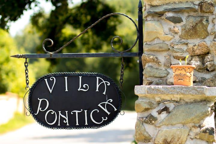 Villa Pontica - โซเฟีย - วิลล่า