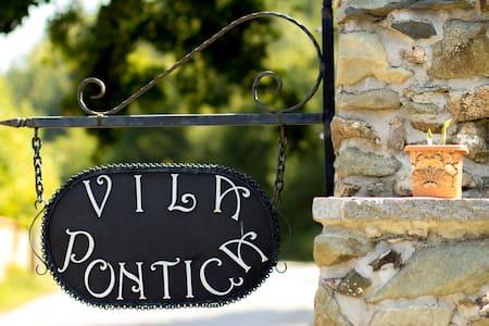 Villa Pontica - ソフィア - 一軒家