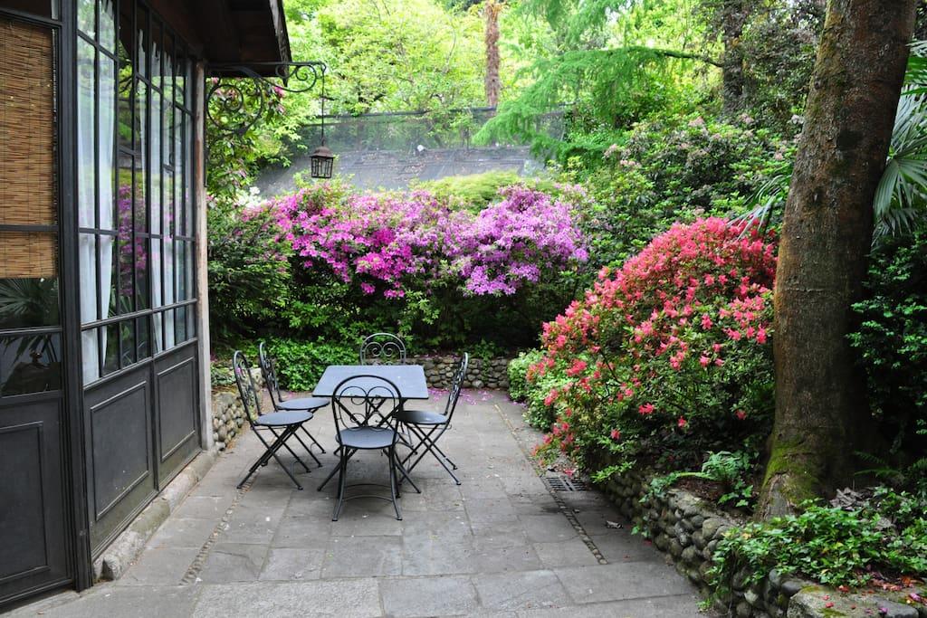 Giardino - The garden